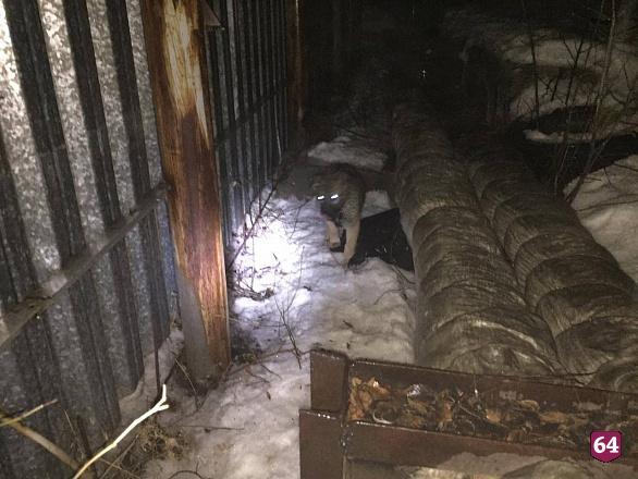 Саратовские спасатели вытащили из колодца щенка