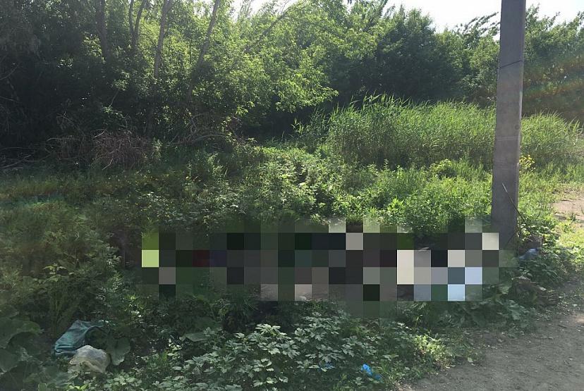 В Марксе на обочине дороги обнаружен труп человека с разбитой головой.