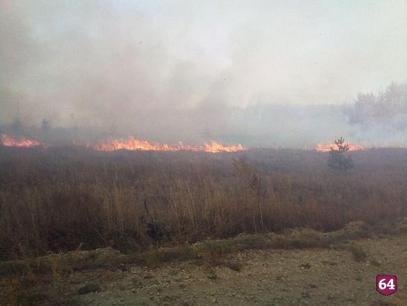 Вчера в Аткарском районе спасатели боролись с лесным пожаром и отсекали распространение огня к двум деревням — Ершовке и Варыпаевке